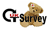Guidance notes for Paediatric CT dose survey