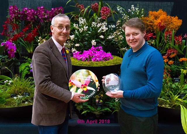 Presentation to Dr. Stuart Meeson for Best Hybrid Orchid (Pleione Tongariro) at RHS London Orchid Show 2018 with James Alexander-Sinclair on the Orchid Society of GB stand. Official photograph provided courtesy of the RHS.